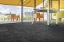 Ковровая плитка Block (Блок) Balsan 0