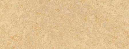 Линолеум Marmoleum Click (Мармолеум Клик) Forbo - Фото 1